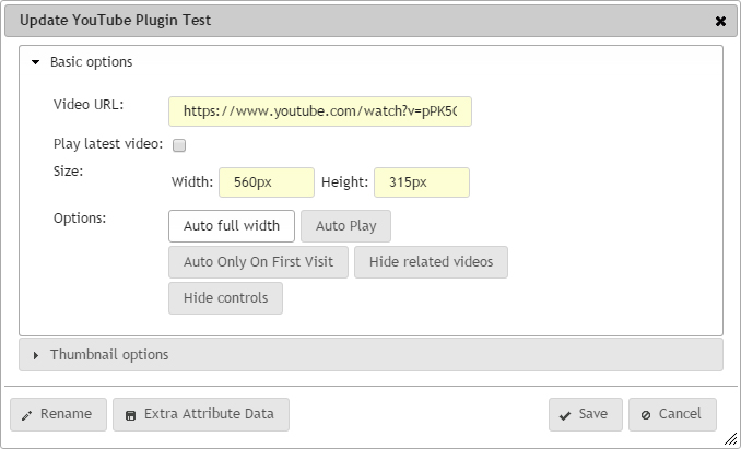 YouTube Plugin update dialog basic options